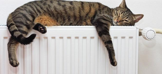 radiator_03.jpg